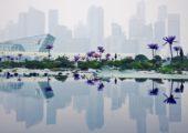 Cestu do Singapuru si předem pečlivě naplánujte. Vedro tu je sice neustále, od července do října tu ale často narazíte na silný smog zapřičiněný vypalováním pralesů na nedaleké Sumatře. Foto: Lukáš Novák