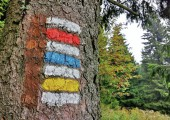 Barvy podél cest: Česko jako světová velmoc