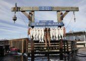 10 důvodů, proč jet na Aljašku