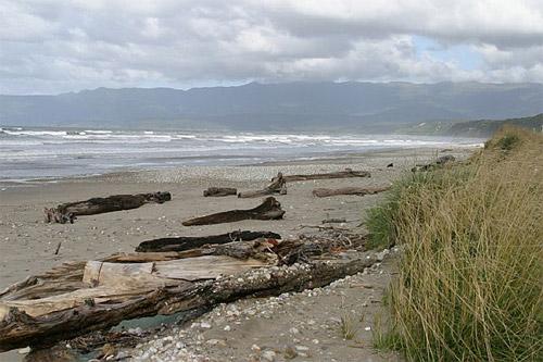 Fiordland: Člověk vzal, ale prales si dnes bere zpátky
