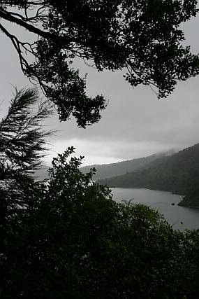 Nový Zéland: Prales, divoši a déšť