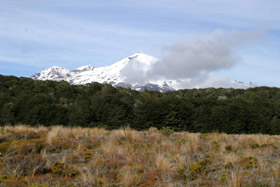 Tongariro: V kraji kouřových hor
